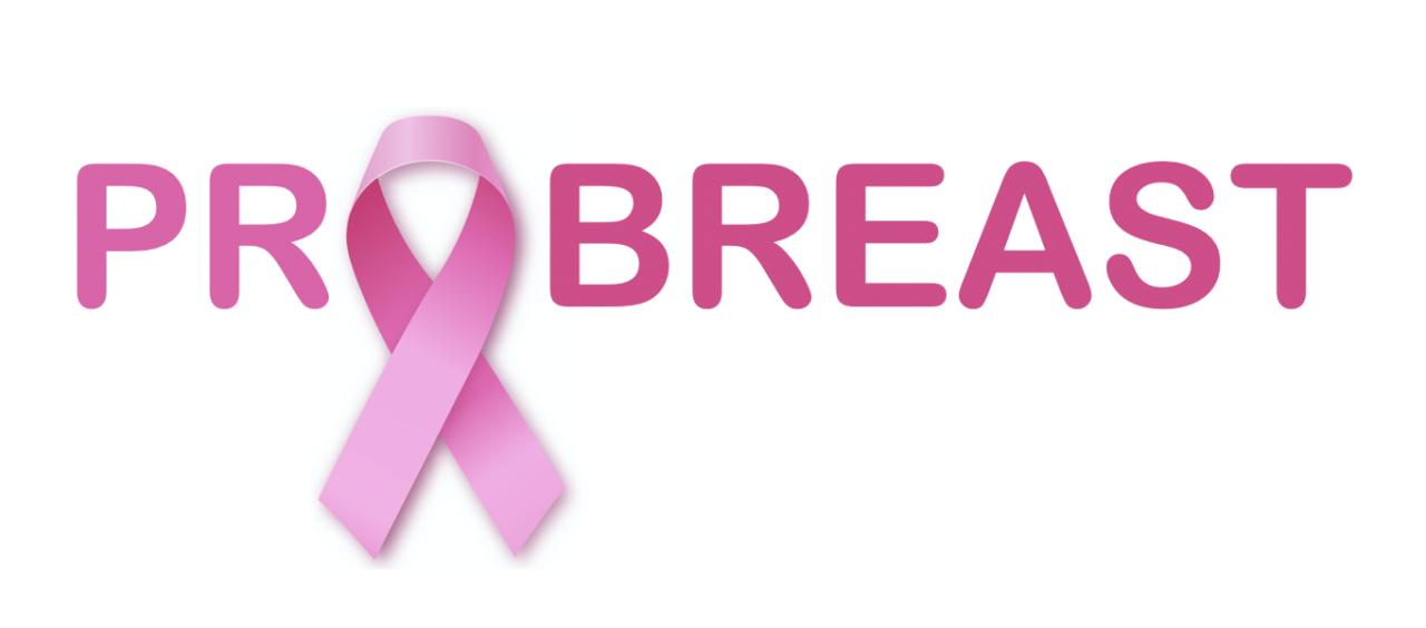 """Calcio d'inizio per il progetto PROBREAST """"Un approccio integrato per il trattamento personalizzato dei pazienti affetti da carcinoma mammario""""."""